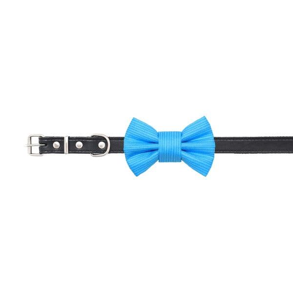 Mucha dla psa Funky Dog Bow Ties, roz. S, turkusowa w kropki