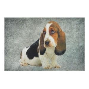 Dywanik Basset Puppy 75x50 cm