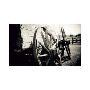 Obraz Black&White no. 34, 41x70 cm