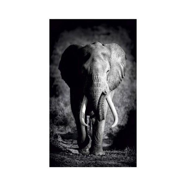 Obraz Black&White no. 7, 41x70 cm