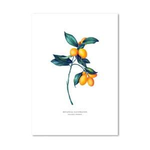 Plakat Leo La Douce Golden Orange, 21x29,7cm