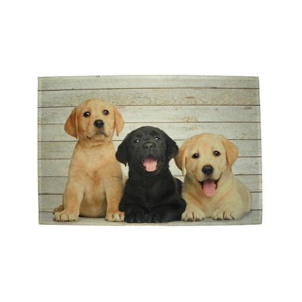 Mata stołowa Mars&More Puppies Labrador 40x30 cm