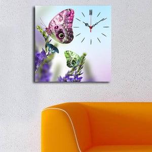 Obraz z zegarem Motyl