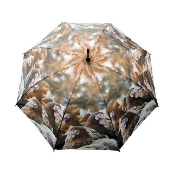 Parasol Chickens