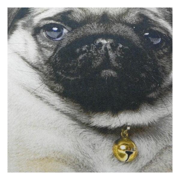 Poduszka Mars&More Baby dog, 50x35 cm