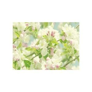 Obraz Na wiosnę, 45x70 cm