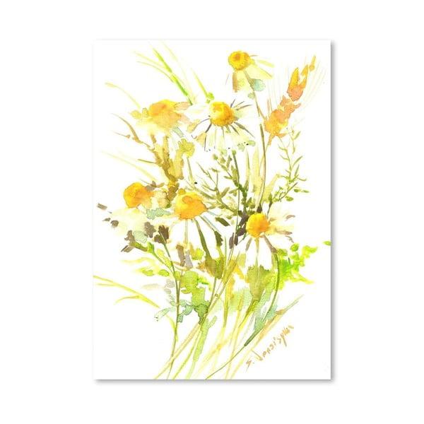 Plakat Yellow Chamomiles (projekt Suren Nersisyan)