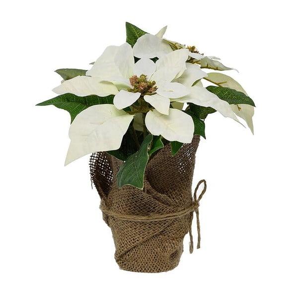 Dekoracja Xmas Flower