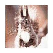 Koc Squirrel, 150x130 cm