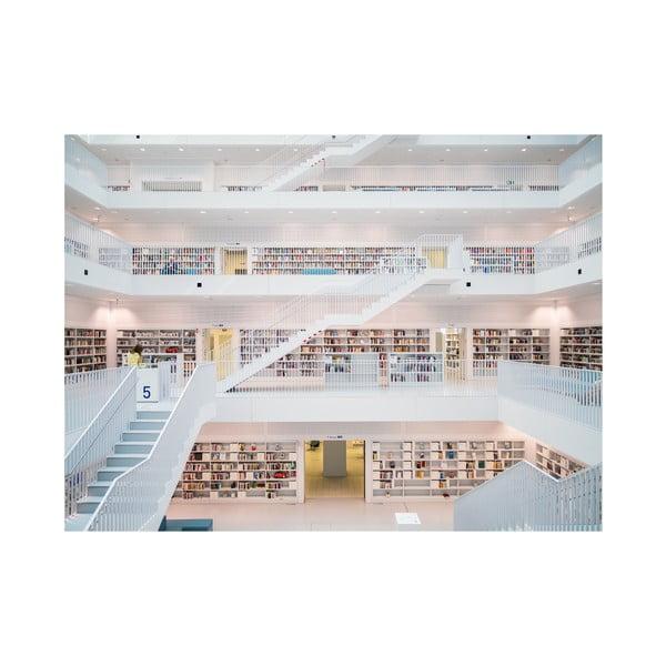 Wielkoformatowa tapeta W bibliotece, 315x232 cm