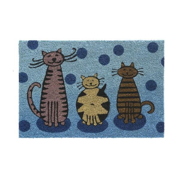 Wycieraczka Hamat Cats, 40x60cm