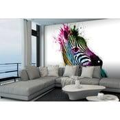 Tapeta wielkoformatowa Kolorowa zebra, 366x254 cm