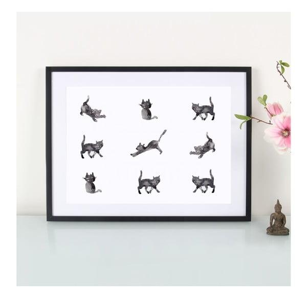 Plakat Katzen, A3