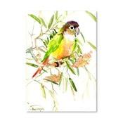 Plakat Parrot