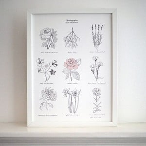 Plakat Flower Language, 30x40 cm