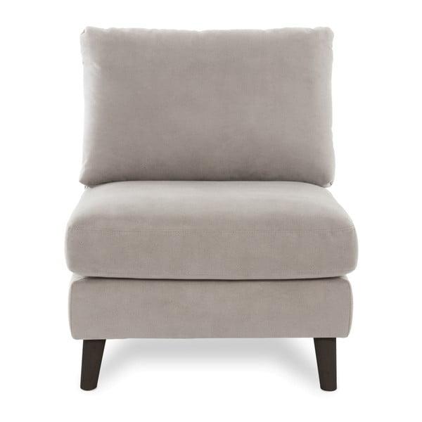 Jasnoszary fotel z czarnymi nogami Vivonita Bill