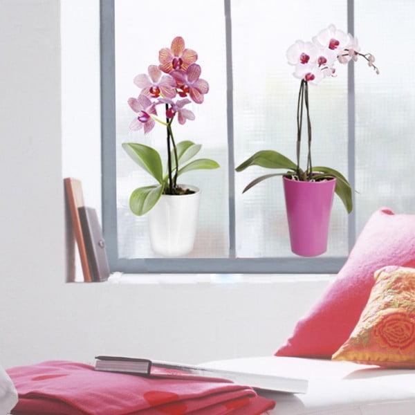 Naklejka na okno Orchidee