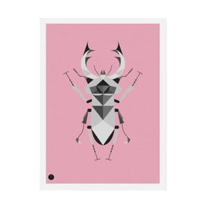 Plakat Stag Beetle Pink, 50x70 cm