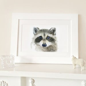 Plakat Raccoon A4