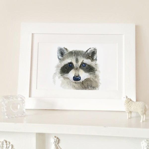 Plakat Raccoon A4