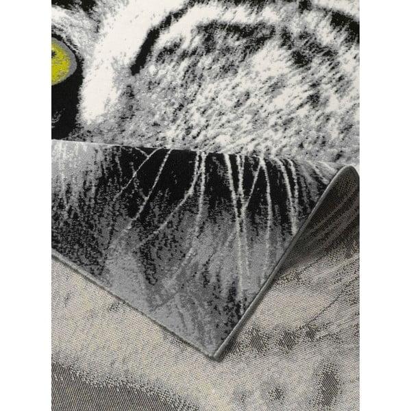 Dywan Safari - tygrysica, 160x225 cm