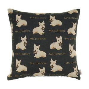 Szara poszewka na poduszkę Apolena Doggies Mr. London, 43x43 cm