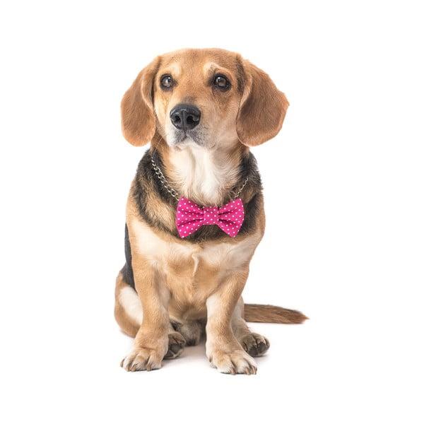 Mucha dla psa Funky Dog Bow Ties, roz. L, różowa w kropki