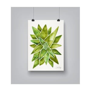 Plakat Americanflat Aloevera, 30x42 cm