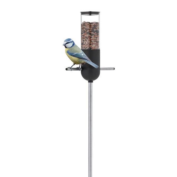 Karmnik dla ptaków Blomus Birdie