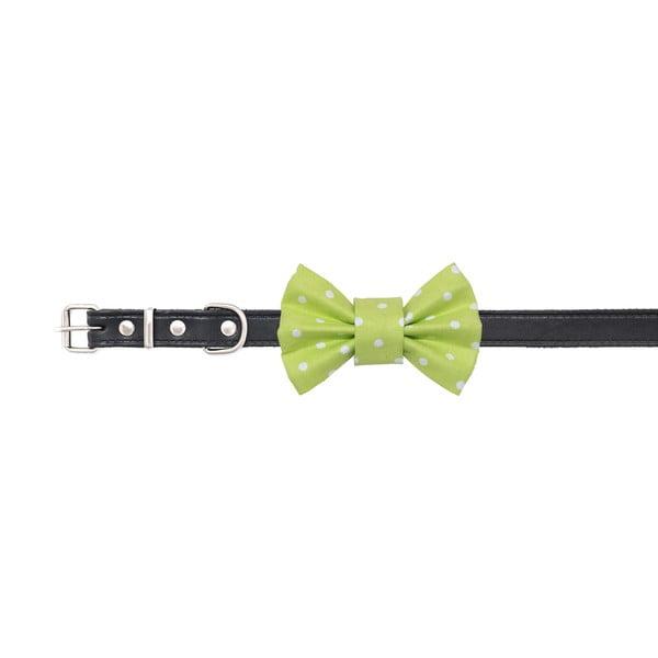 Mucha dla psa Funky Dog Bow Ties, roz. L, jasnozielona w kropki