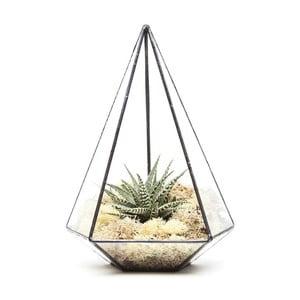 Terrarium z roślinami Jewel