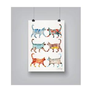 Plakat Americanflat Cat Collection, 30x42 cm