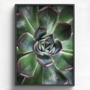 Obraz w drewnianej ramie HF Living Manati, 50x70 cm