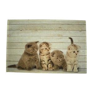 Mata stołowa Four Kitten British Shorthare 40x30 cm