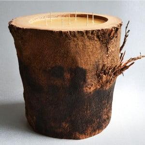 Palmowa świeczka Legno o zapachu miodu, 160 godz.