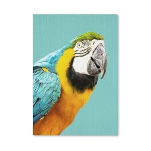 Plakat Tropical Parrot
