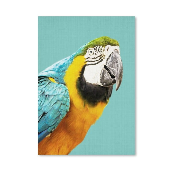 Plakat Tropical Parrot