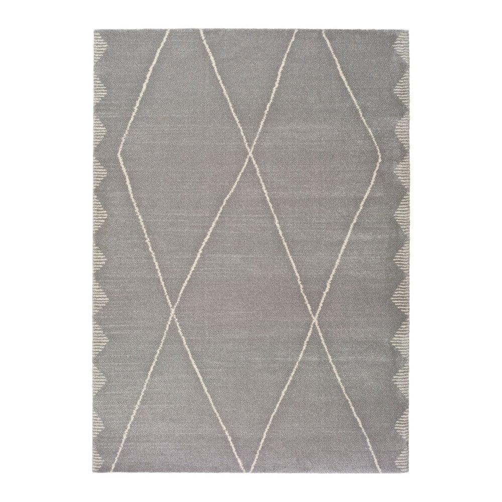 Szary dywan Universal Tanum Duro Plata, 120x170 cm
