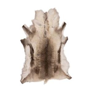 Brązowobeżowa skóra z sobola Reino, 120x100cm