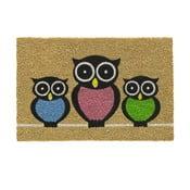 Wycieraczka Hamat Owls, 40x60 cm