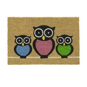 Wycieraczka Hamat Owls, 40x60cm