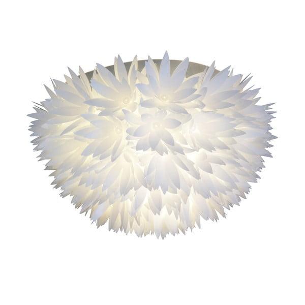 Naścienna lampa Young Living, biała