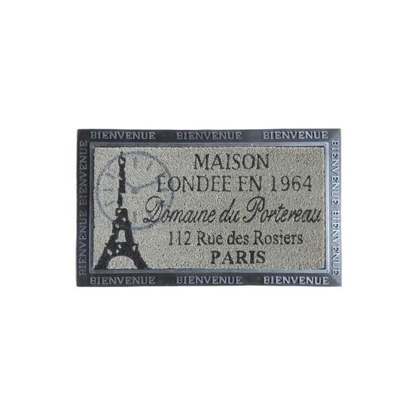 Wycieraczka Paris