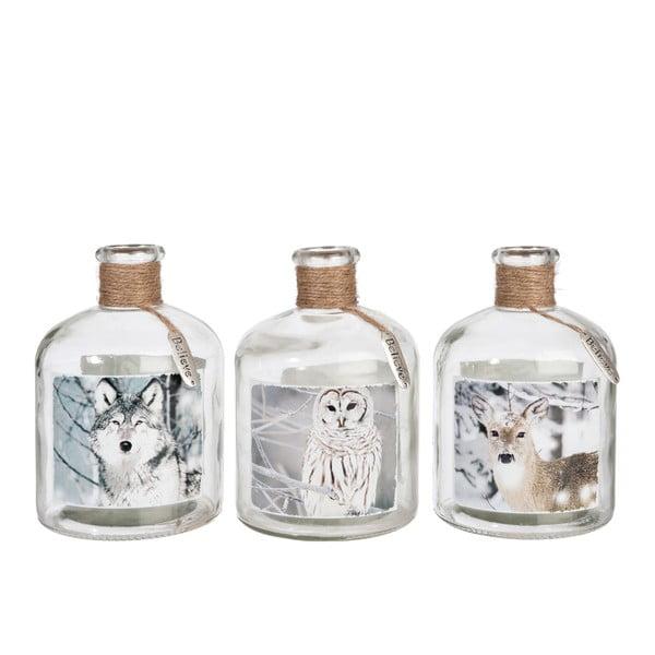 Komplet 3 wazonów Bottle Wolf