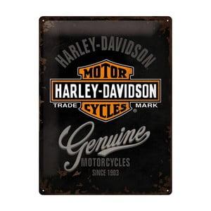 Blaszana tablica Harley Davidson Motor, 30x40 cm