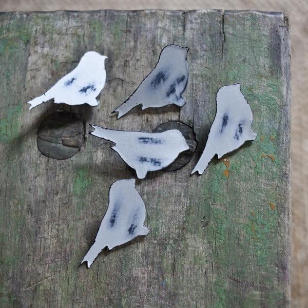 Komplet 6 pinezek Bird, biały