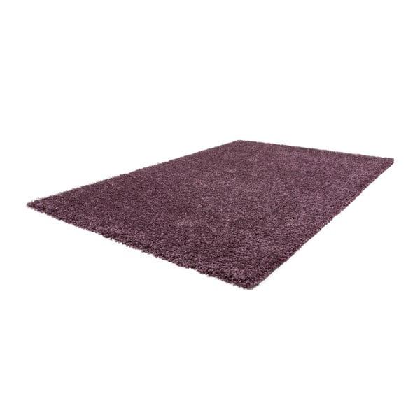 Dywan Solar 78 Violet, 80x150 cm