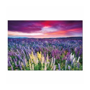Obraz na płótnie Purpel Sky, 120x80 cm