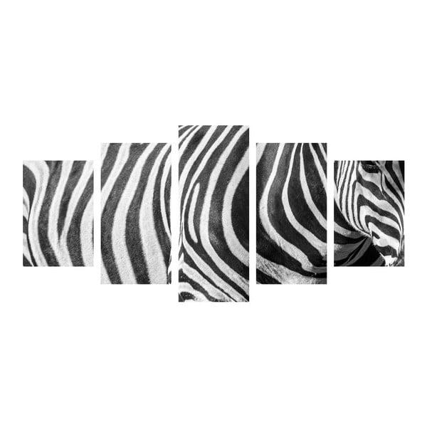 Wieloczęściowy obraz Black&White Zebra, 100x50 cm