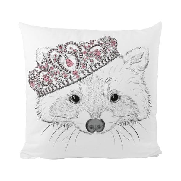 Poduszka   Royal Raccoon, 50x50 cm